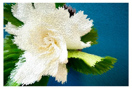 Picture-Pixel Bloom 54X36