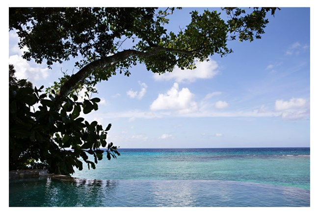 Picture-Paradise 54X36 - 360
