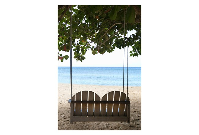 Picture-Swing Away 24X36 - 360