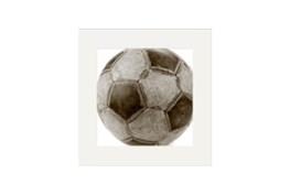 Art-Youth Sport Soccer