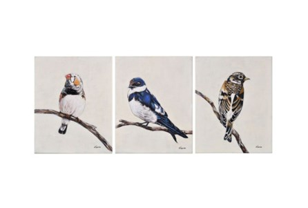 Picture-3 Piece Set Trio Of Birds 16X20