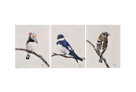 Picture-3 Piece Set Trio Of Birds 16X20