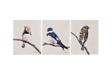 Picture-3 Piece Set Trio Of Birds 16X20 - Main