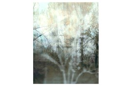 Picture-30X37 Peering Through The Window II