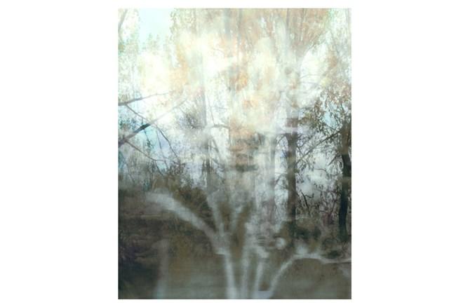 Picture-24X30 Peering Through The Window II - 360