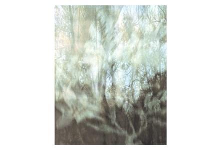 Picture-30X37 Peering Through The Window III