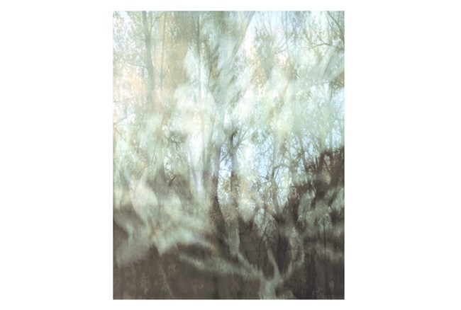 Picture-24X30 Peering Through The Window III - 360