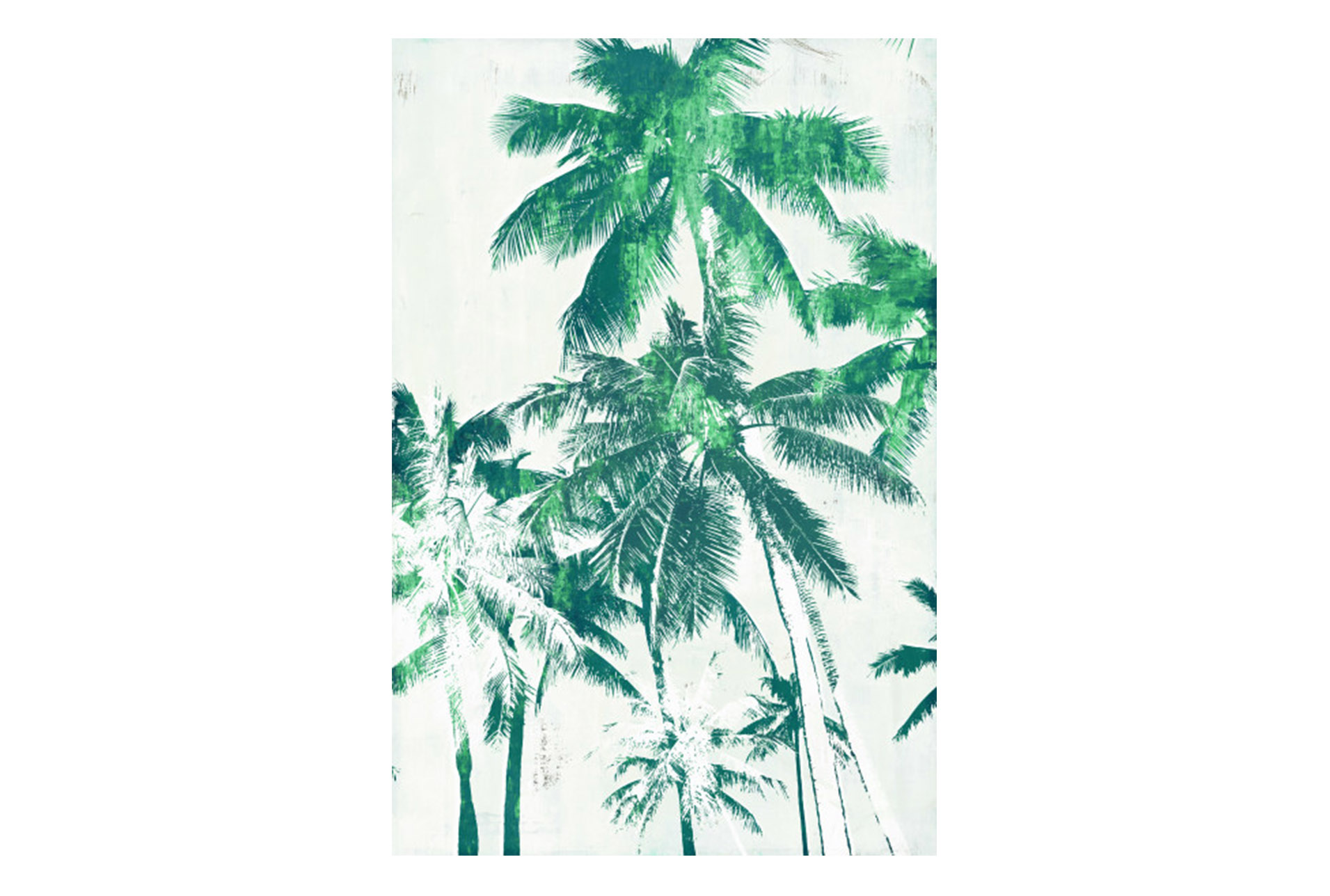 Attractive Picture 30X45 Palm Spring I (Qty: 1) Has Been Successfully Added To Your  Cart.