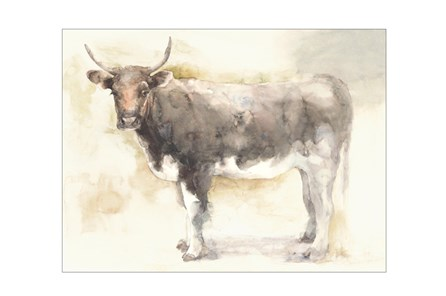 Picture-40X30 Beautiful Bovine - Main