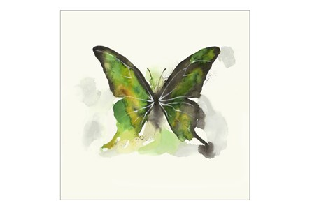 Picture-30X30 Butterfly Dance I