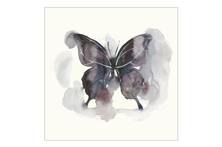 Picture-30X30 Butterfly Dance Ii - Main