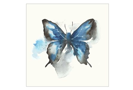 Picture-30X30 Butterfly Dance III