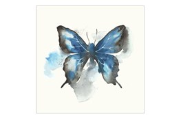 Picture-24X24 Butterfly Dance III