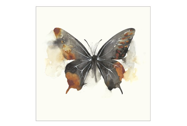 Picture-30X30 Butterfly Dance IV - 360