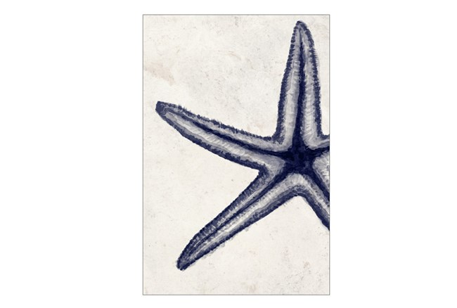 Picture-30X45 Indigo Starfish - 360