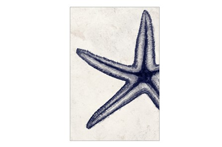 Picture-24X36 Indigo Starfish - Main