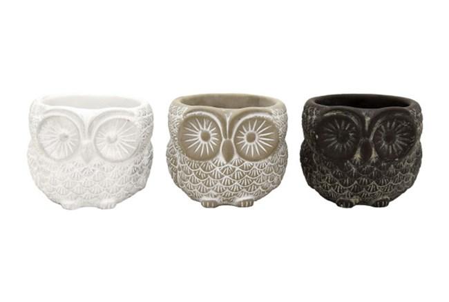 Owl Assorted Pots - 360