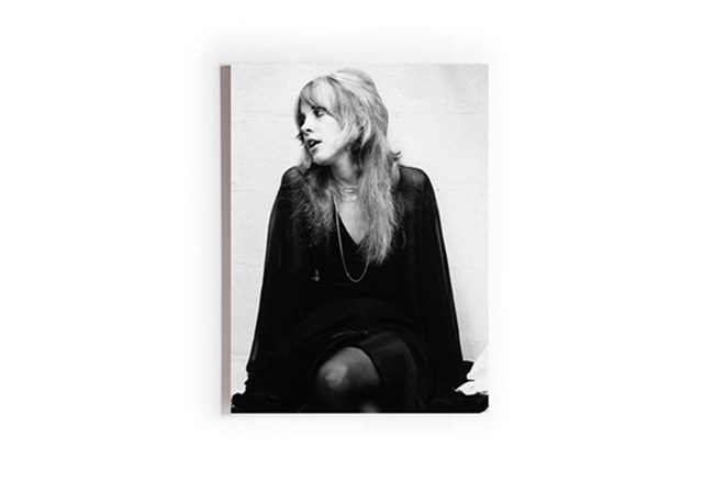 Picture-Stevie Nicks Printed On Wood Box 18X24 - 360