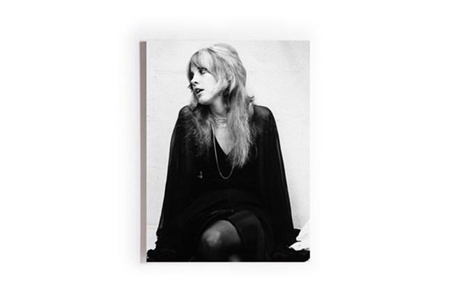 Picture-Stevie Nicks Printed On Wood Box 30X40 - 360