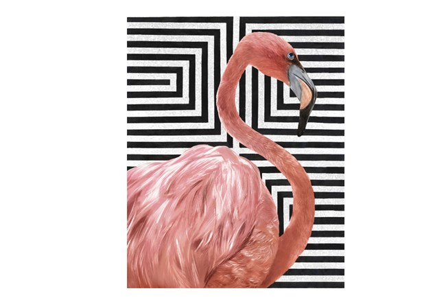 Picture-30X38 Modern Flamingo I - 360