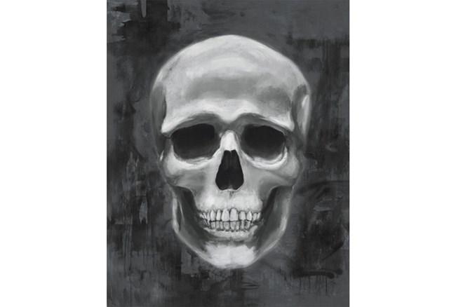 Picture-24X30 Skull - 360