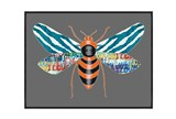 Picture-30X22 Luxe Fly Blue - Signature