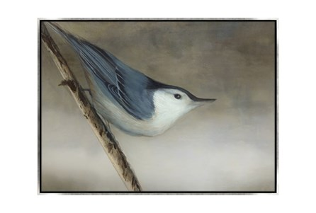 Picture-33X24 Bird Dream I Canvas Print
