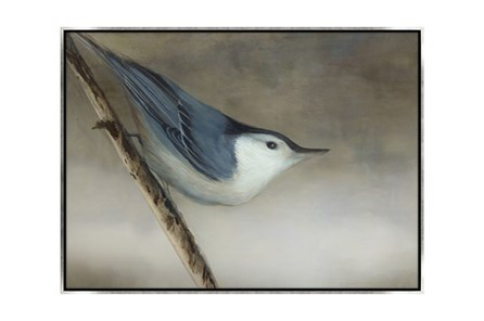 Picture-33X24 Bird Dream I Canvas Print - Main