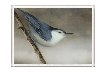 Picture-33X24 Bird Dream I Glass Framed
