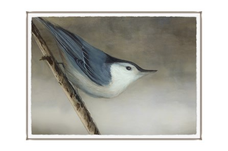 Picture-33X24 Bird Dream I Glass Framed - Main