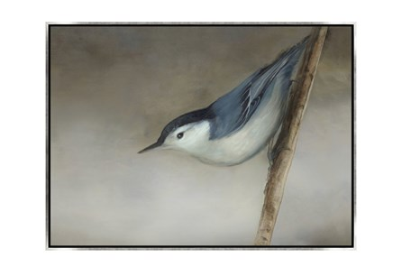Picture-33X24 Bird Dream II Canvas Print - Main