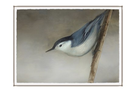 Picture-33X24 Bird Dream II Glass Framed