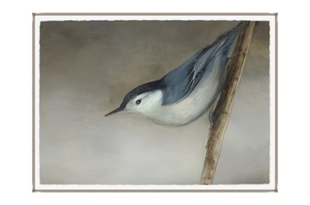 Picture-33X24 Bird Dream II Glass Framed - Main
