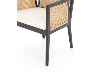 Admirable Cane Dining Arm Chair Ibusinesslaw Wood Chair Design Ideas Ibusinesslaworg