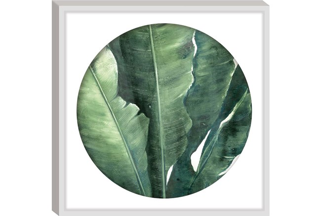 Picture-Round Framed Palm 26X26 - 360