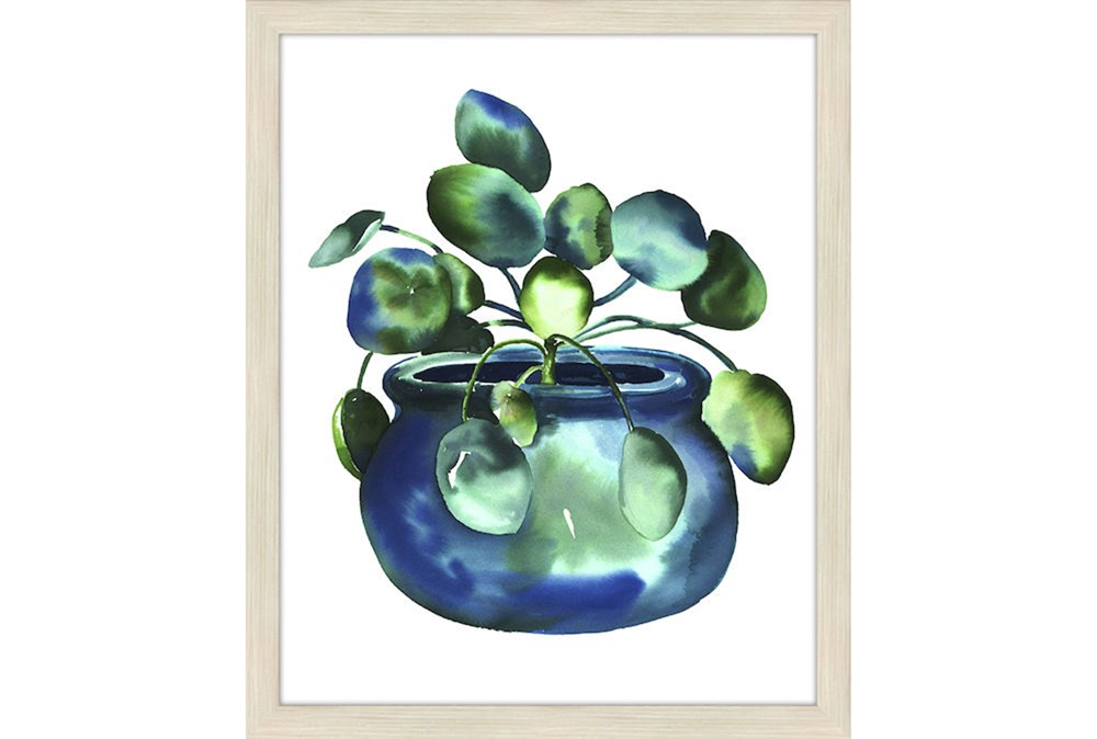 Picture-Lucky Plant II