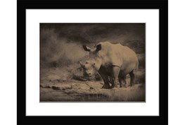 Picture-Rhino Ridge