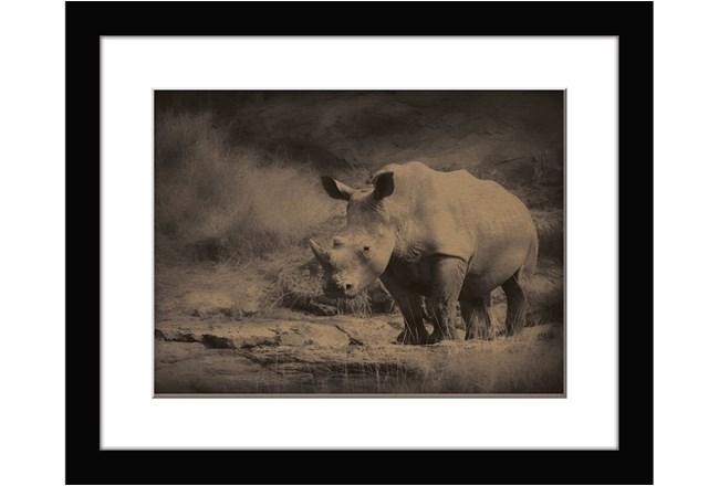 Picture-Rhino Ridge - 360