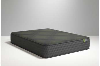 R1 Plus Plush Queen Mattress
