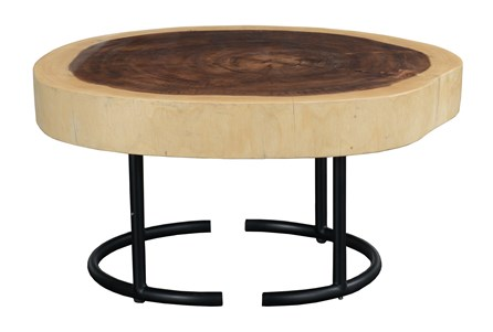 Round Tree Stump Pattern End Table