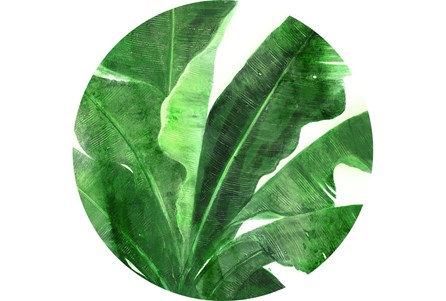 Picture-Uraba Palm 30X30
