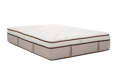 Latex Choice Plush Queen Mattress