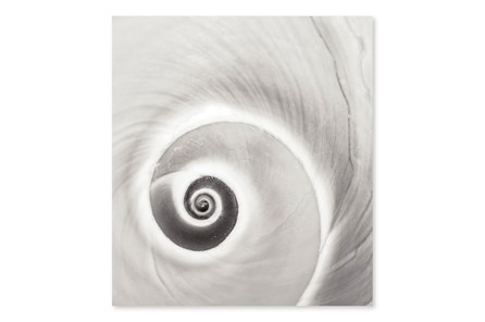 Picture-Sea Shell Curve Diamond Dust 36X40