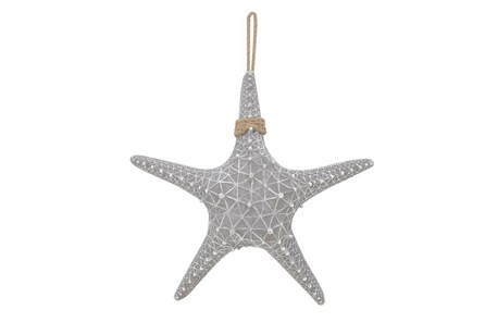 Youth-20 Inch Light Blue Starfish