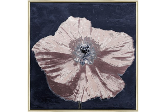 Picture-Poppin Poppies I 35X35 - 360