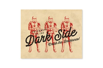 Picture-Retro Dark Side 20X16