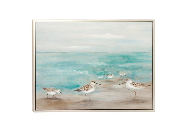 Picture-Seagulls On The Coast 47X36 - 360