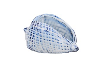 Blue Ceramic Seashell, Blue