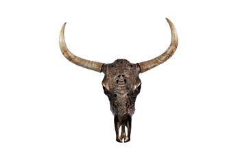 Wall Decor Carved Brown Bull Skull