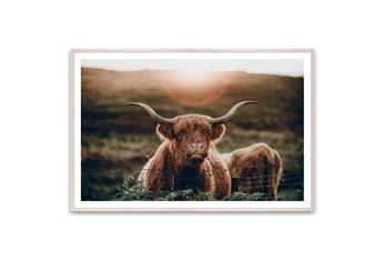 60X40 Highland Cow